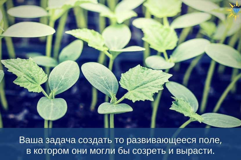 Ваша задача создать то развивающееся поле, в котором они могли бы созреть и вырасти.